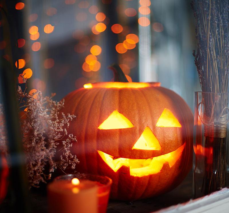 Zucca Halloween Essiccare.Le Zucche Di Halloween Fiorista Il Giglio A San Martino Ferrara
